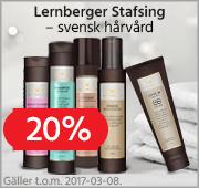 lernberger_v9