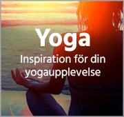 Yoga v2