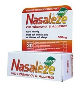 Bild på Nasaleze Mint 500 mg
