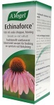 Echinaforce orala droppar, lösning 100 ml