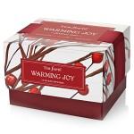 Warming Joy 10 tepåsar