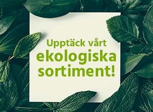 ekologiskt_v40