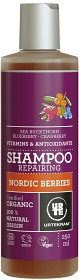 Bild på Nordic Berries Shampoo 250 ml