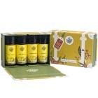 The Handmade Soap Co Travel Kit